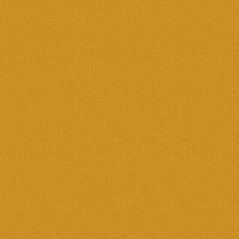 Oracal 641 Matte Vinyl 12 Inch x 6 Foot Roll Orange